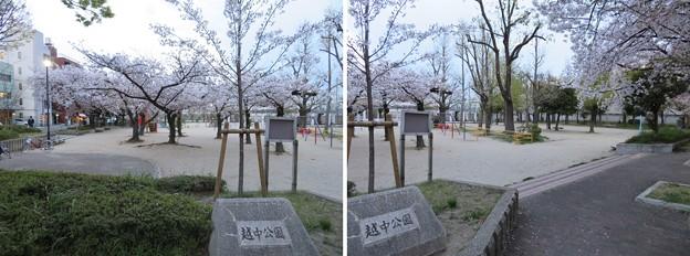 19.04.09.越中公園/細川越中守屋敷跡(大阪市中央区)