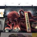 Photos: 道頓堀川(中央区)リバーウォーク