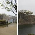 Photos: 大坂城(大阪府大阪市中央区)西外堀