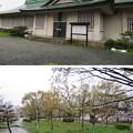 大坂城(大阪府大阪市中央区)西大番頭小屋跡