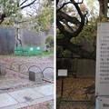 大坂城(大阪府大阪市中央区)銀明水井戸