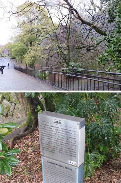 大坂城(大阪府大阪市中央区)山里口門跡~山里丸