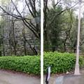 大坂城(大阪府大阪市中央区)山里丸石垣遺構