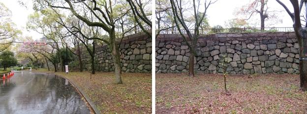 大坂城(大阪府大阪市中央区)西の丸石垣