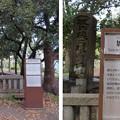 Photos: 大坂城(大阪府大阪市中央区)城中焼亡埋骨墳