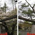 阿部野神社(大阪市阿倍野区)狛馬(駒。神馬)