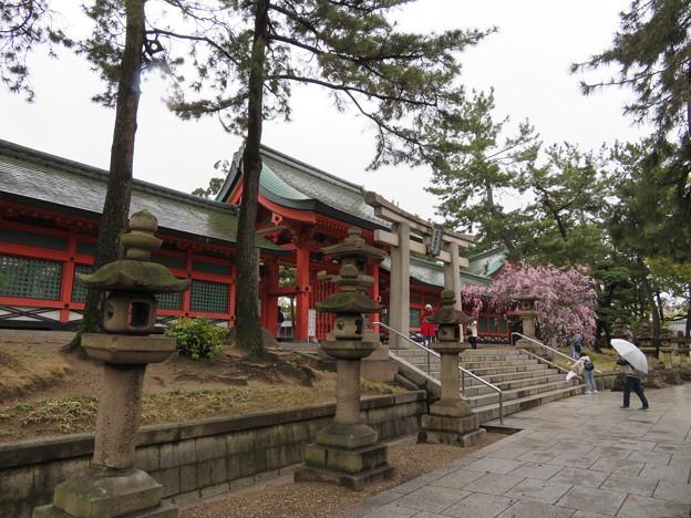 住吉大社(大阪市住吉区)神門