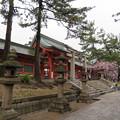 Photos: 住吉大社(大阪市住吉区)神門