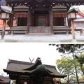 Photos: 住吉大社(大阪市住吉区)第四宮