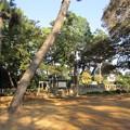 洗足池公園 (大田区南千束)南洲西郷先生留魂祠