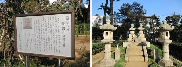 洗足池公園 (大田区南千束)勝海舟夫妻墓