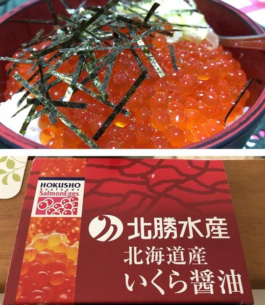 Photos: イクラちゃん(●´Д`●)