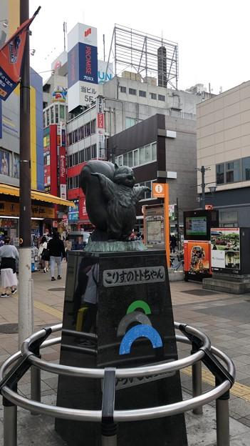 こりすのトトちゃん像(大宮区)