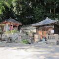 Photos: 11.10.31.泰叡山瀧泉寺 目黒不動尊(目黒区)