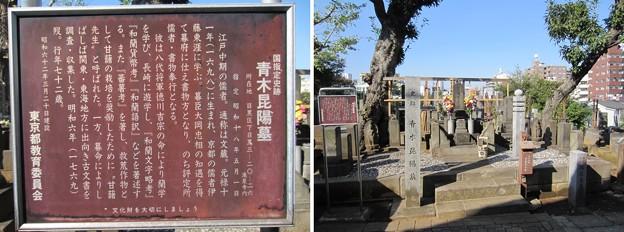 泰叡山瀧泉寺 目黒不動尊(目黒区)青木昆陽墓