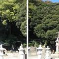 12.11.14.泰叡山瀧泉寺 目黒不動尊(目黒区)