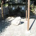 Photos: 泰叡山瀧泉寺 目黒不動尊(目黒区)