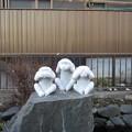 Photos: 帝釈天参道(葛飾区柴又)三猿