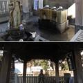 Photos: 題経寺 柴又帝釈天(葛飾区)手水舎 浄行菩薩
