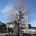 Photos: 半田稲荷神社(葛飾区)