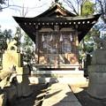 Photos: 半田稲荷神社(葛飾区)白狐殿