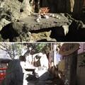 Photos: 葛西神社(葛飾区)厳島社