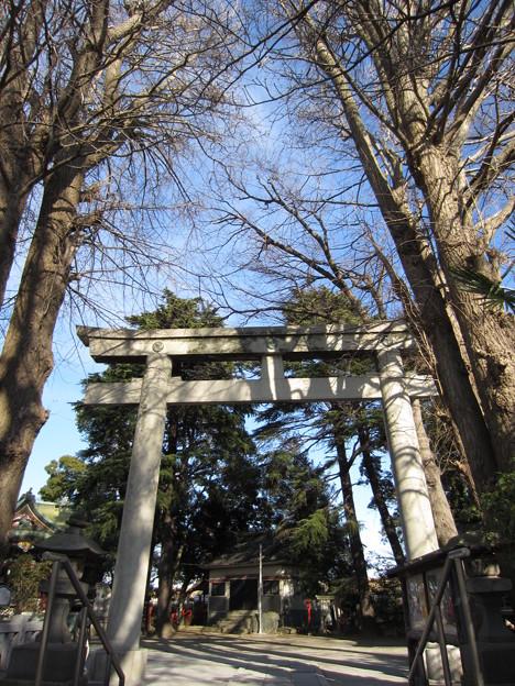 葛西神社(葛飾区)境内鳥居
