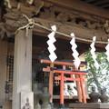 Photos: 葛西神社(葛飾区)豊受大神