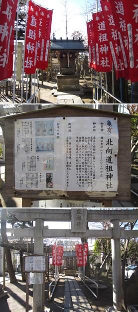 亀有香取神社(葛飾区)北向道祖神