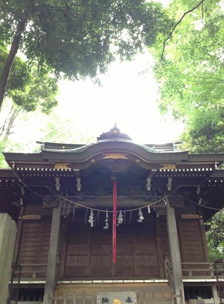 堀ノ内熊野神社(杉並区)拝殿