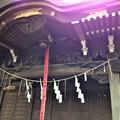 Photos: 堀ノ内熊野神社(杉並区)拝殿