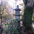 Photos: 祥雲寺(広尾5丁目)狭山藩北条氏 層塔型仏塔