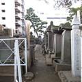 Photos: 祥雲寺(広尾5丁目)曲直瀬玄朔墓碑
