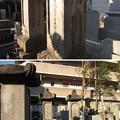 Photos: 祥雲寺(広尾5丁目)岡部藩安部家(あんべ)墓所
