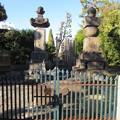 Photos: 祥雲寺(広尾5丁目)出雲国広瀬藩松平家墓所