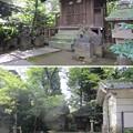 Photos: 渋谷氷川神社 (渋谷区東)厳島神社