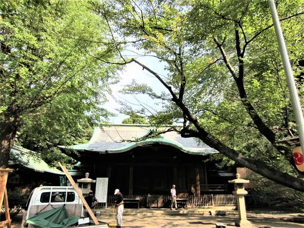 渋谷氷川神社 (渋谷区東)拝殿
