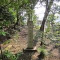 Photos: 渋谷氷川神社 (渋谷区東)本殿御敷地旧跡