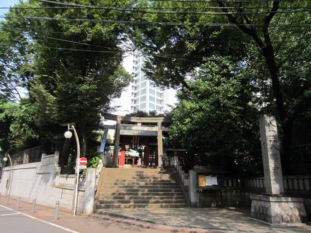 Photos: 金王八幡宮/渋谷城水堀跡・本郭(渋谷区渋谷)