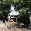 金王八幡宮/渋谷城水堀跡・本郭(渋谷区渋谷)
