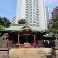 金王八幡宮拝殿/渋谷城(渋谷区渋谷)