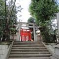 豊榮稲荷神社/渋谷城郭? (渋谷区渋谷3丁目)