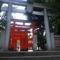 Photos: 豊榮稲荷神社/渋谷城郭? (渋谷区渋谷3丁目)
