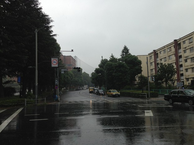 Photos: 水野大監物屋敷(新宿区霞ヶ丘町)