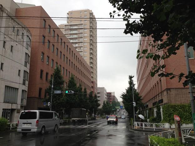 仙寿院境内西端(千駄ヶ谷2丁目)