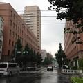 Photos: 仙寿院境内西端(千駄ヶ谷2丁目)