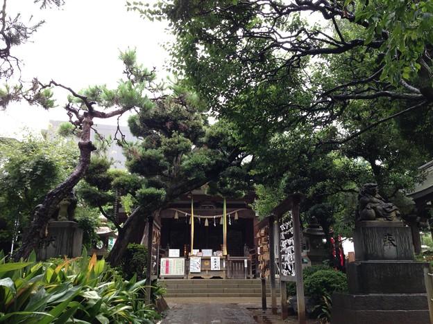 鳩森八幡神社(千駄ヶ谷八幡神社。渋谷区)拝殿
