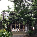 Photos: 鳩森八幡神社(千駄ヶ谷八幡神社。渋谷区)拝殿