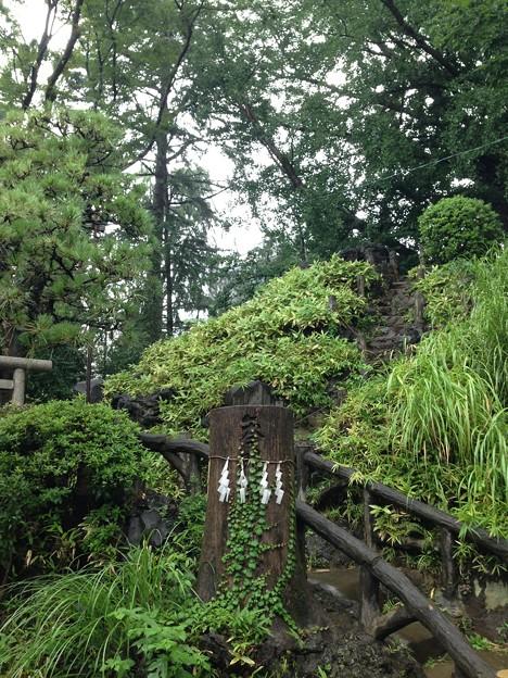 Photos: 鳩森八幡神社(千駄ヶ谷八幡神社。渋谷区)富士塚