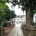Photos: 鳩森八幡神社(千駄ヶ谷八幡神社。渋谷区)北東鳥居